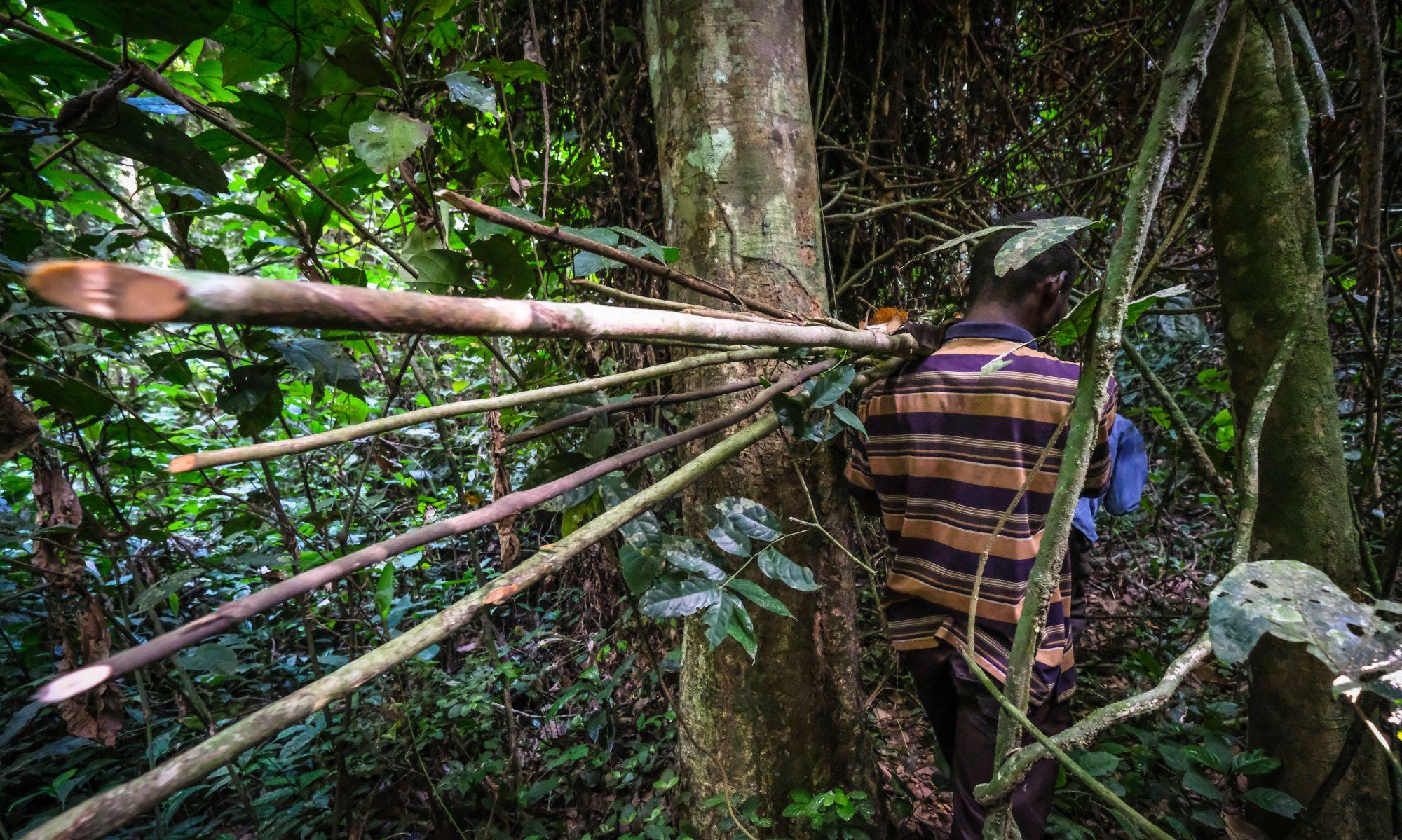 RD Congo Résiliences et Résistances